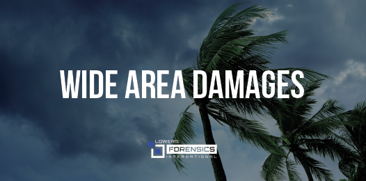 The Wide Impact of Wide Area Damages